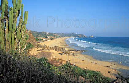 mexico 223 