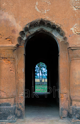 india 509 