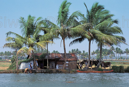 india 221 