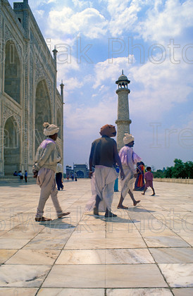 india 286 