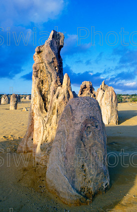 australia 541 