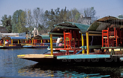 mexico 318 