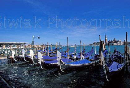 venice 141 