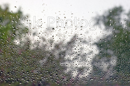 rain 01 